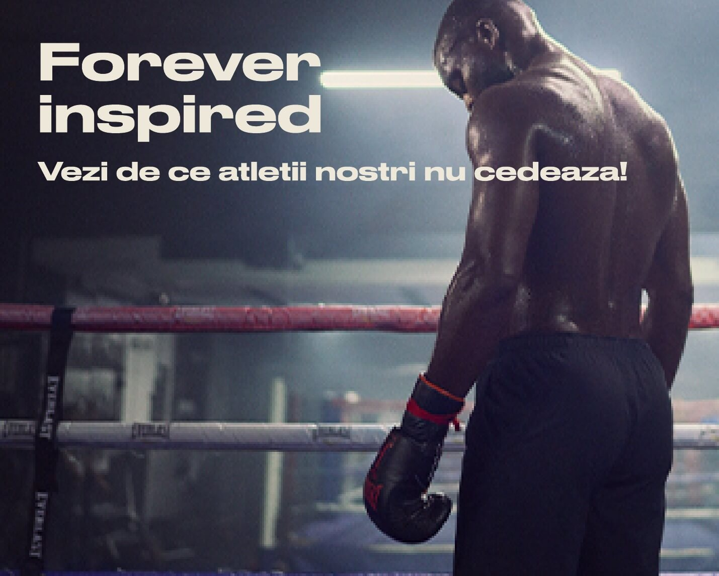 Forever Fit - The Zone