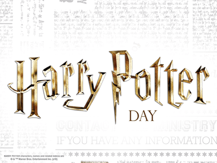 HARRY POTTER BANNER